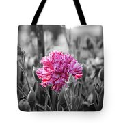 Pink Carnation Tote Bag by Sumit Mehndiratta