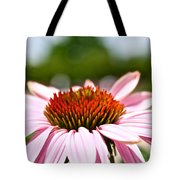 Pink Cone Flower Tote Bag
