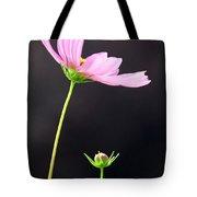 Pink Cosmos Tote Bag