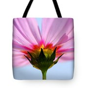 Pink Cosmos Tote Bag by Rich Franco