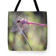 Pink Dragonfly In The Marsh Tote Bag