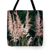 Pink Feathery Reflectors Tote Bag