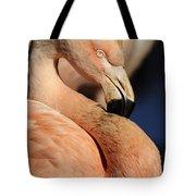 Pink Flamingo 8 Tote Bag