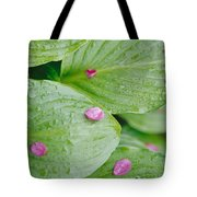 Pink Flower Petals Resting On Dew Tote Bag