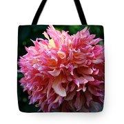 Pink Frills Tote Bag