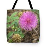Pink Fuzzball Tote Bag