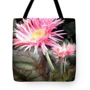 Pink Gerber Daisies Tote Bag