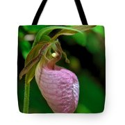 Pink Lady Slipper Orchid Dspf232 Tote Bag