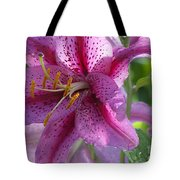 Pink Lily After The Rain Tote Bag