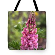 Pink Lupine Tote Bag