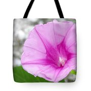 Pink Morning Glory Flower Tote Bag