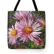 Pink New York Aster- Symphyotrichum Novi-belgii Tote Bag