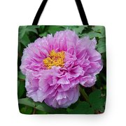 Pink Peony Flowers Series 9 Tote Bag