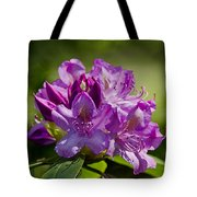 Pink Petals On The Trail Tote Bag