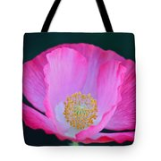 Pink Poppy 2 Tote Bag
