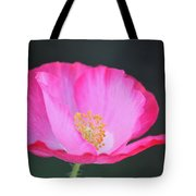 Pink Poppy 3 Tote Bag