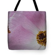Pink Prickly Poppy Tote Bag