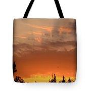 Pink Rays And Orange Skies Tote Bag