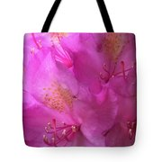 Pink Rhododendron Bloom  Tote Bag