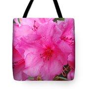 Pink Rhody Tote Bag
