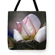 Pink Rose Bloom Tote Bag