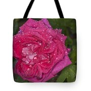 Pink Rose Wendy Cussons With Raindrops Tote Bag