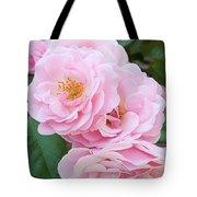 Pink Roses II Tote Bag