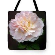 Pink Ruffles Tote Bag
