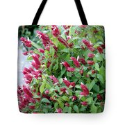 Pink Shrimp Plant Tote Bag