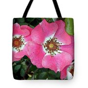 Pink Single Roses Tote Bag
