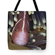 Pink Skunk Clownfish In Its Host Tote Bag