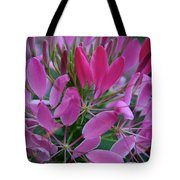 Pink Spider Flower Tote Bag