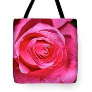 Pink Sunrise Rose Tote Bag