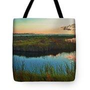 Pink Swamp Sunrise Tote Bag