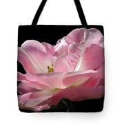 Pink Tulip Isolated Tote Bag