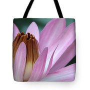 Pink Water Lily Macro Tote Bag by Sabrina L Ryan