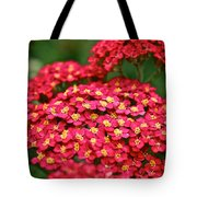 Pink Yarrow Tote Bag