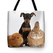 Pinscher Puppy With Rabbit And Guinea Tote Bag