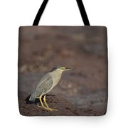 Pint Sized Tote Bag