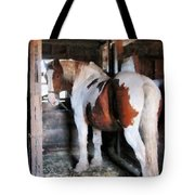 Pinto Looking Back Tote Bag