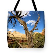 Pinwheel Tree Tote Bag