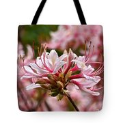 Pinxterflower Azalea Tote Bag