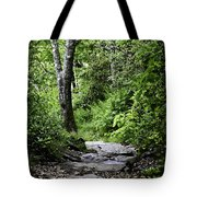 Pisgah Path Tote Bag
