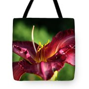 Pistons Of The Pink Yellow Lily Tote Bag