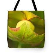 Pitcher Plant Flower Tote Bag