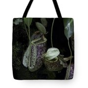 Pitcher Plant Inside The National Orchid Garden In Singapore Tote Bag