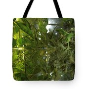 Plant Growth Experiment, Iss Tote Bag