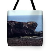 Playa Blanca Tote Bag