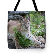 Playful Afternoon Tote Bag