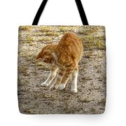 Playful Yellow Kitty Tote Bag